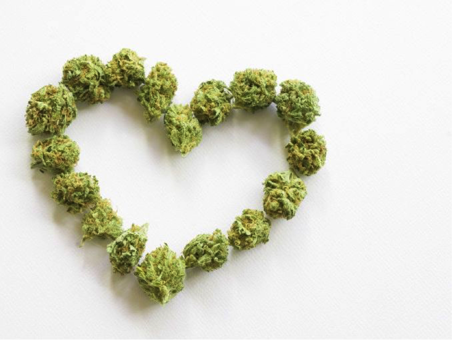 American Heart Month and Marijuana's Relation To Heart Diseases