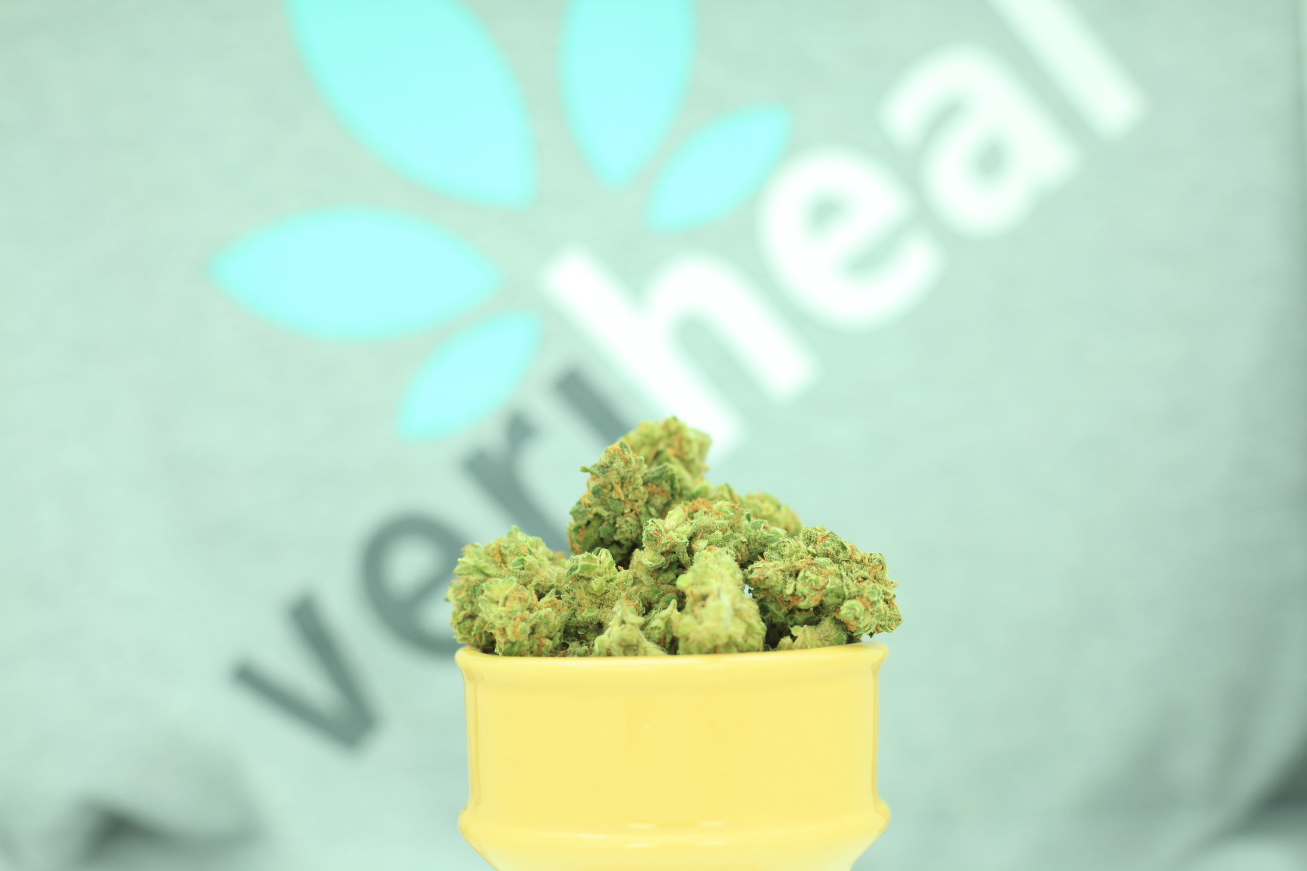 Which states allow out-of-state patients to buy medical marijuana?