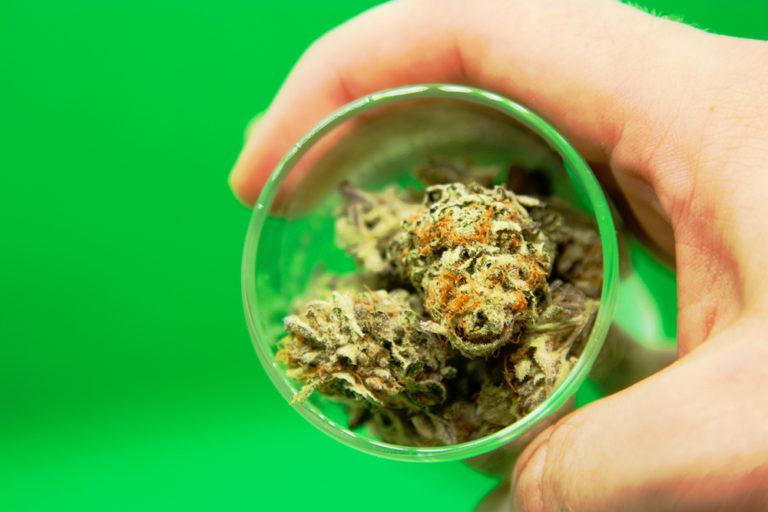 medical marijuana illinois