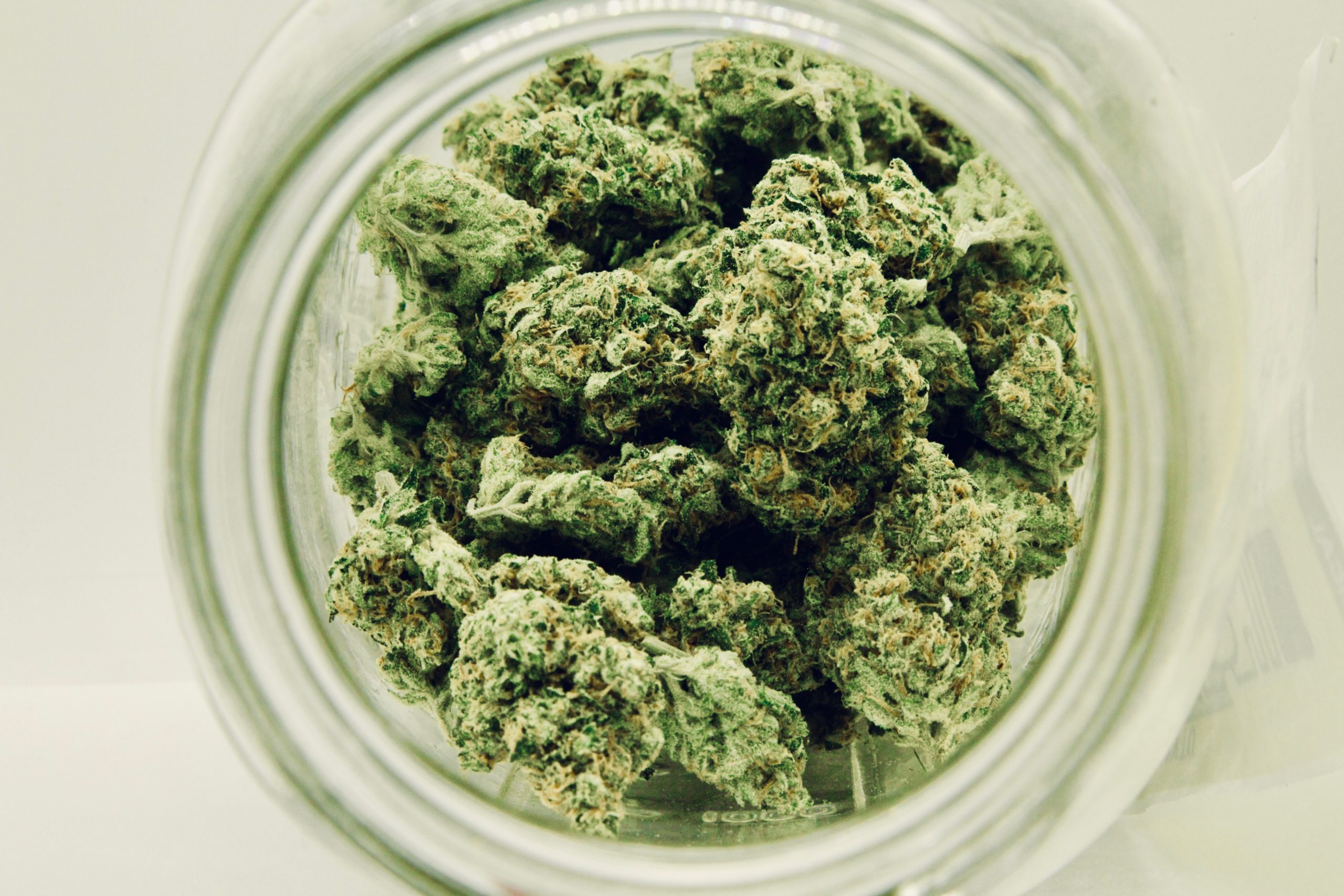 Are Medical and Recreational Marijuana Programs Different?