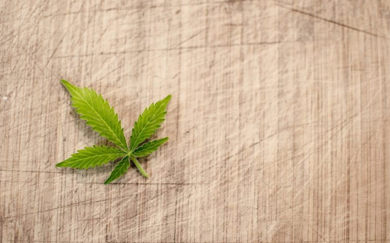 small hemp leaf
