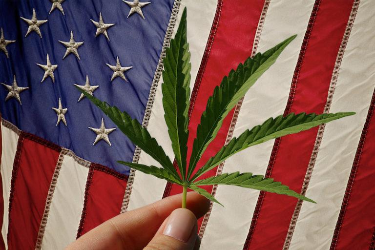 US flag cannabis