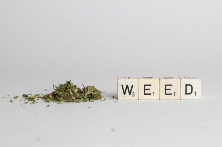 weed blocks