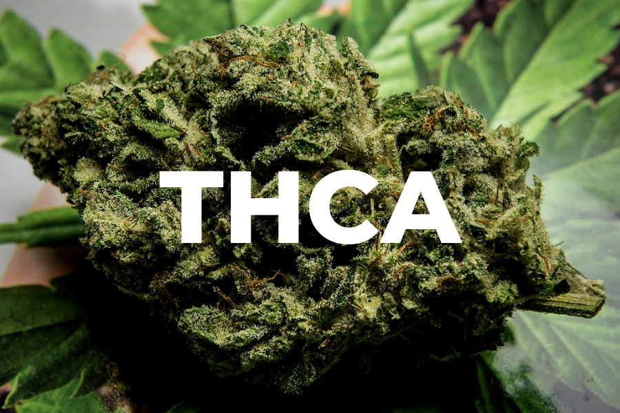 What is THCA? How Does it Work? What are the Benefits?