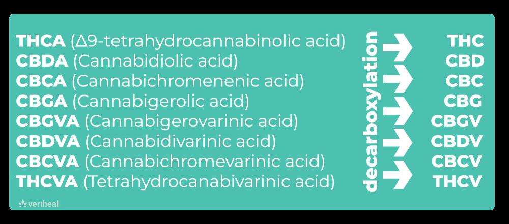 8 cannabinoids infographic veriheal
