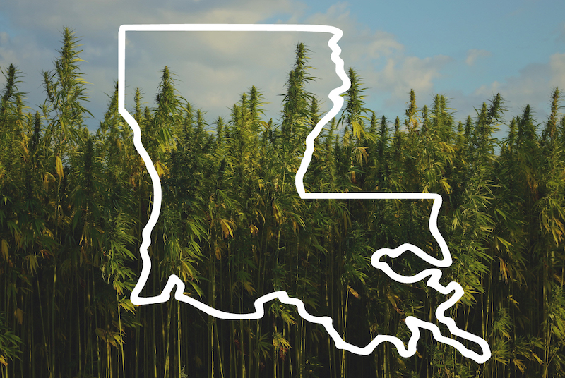 The Complete Guide to Getting Medical Marijuana in Louisiana