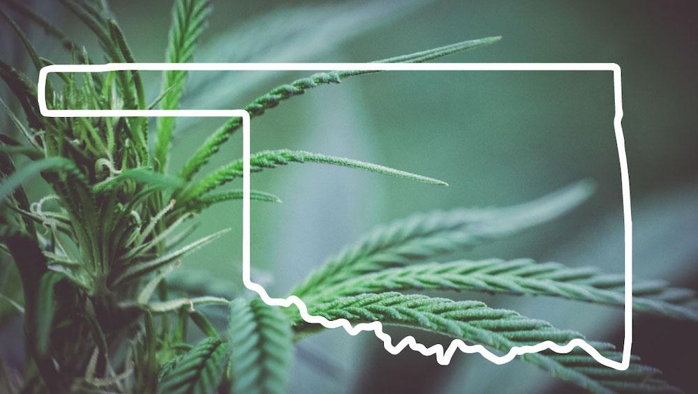 The Status of Oklahoma's Rapidly Growing Medical Marijuana Program