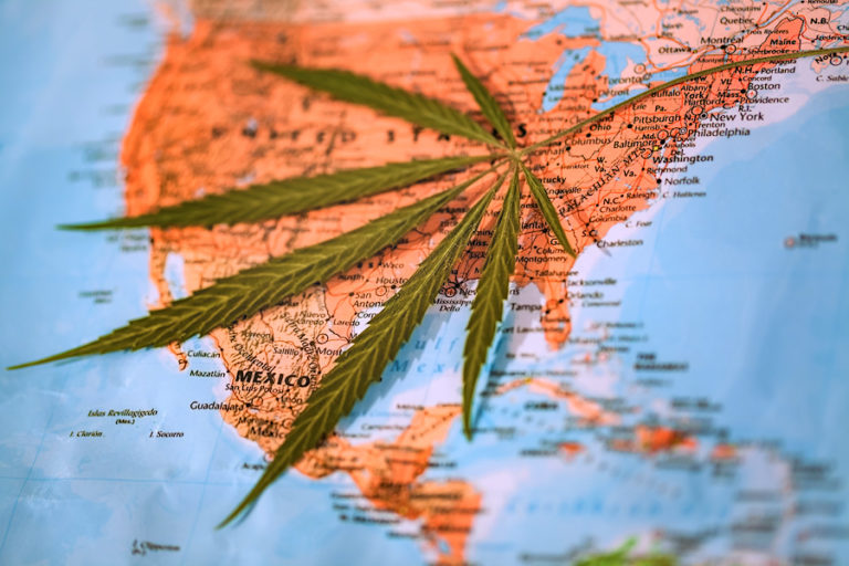 cannabis leaf map