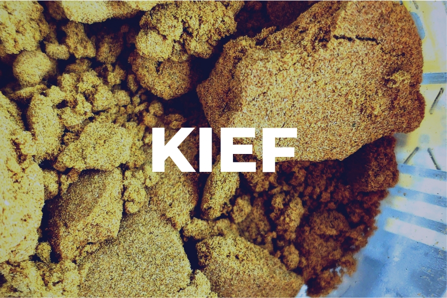 What is Kief and How do you Collect it?