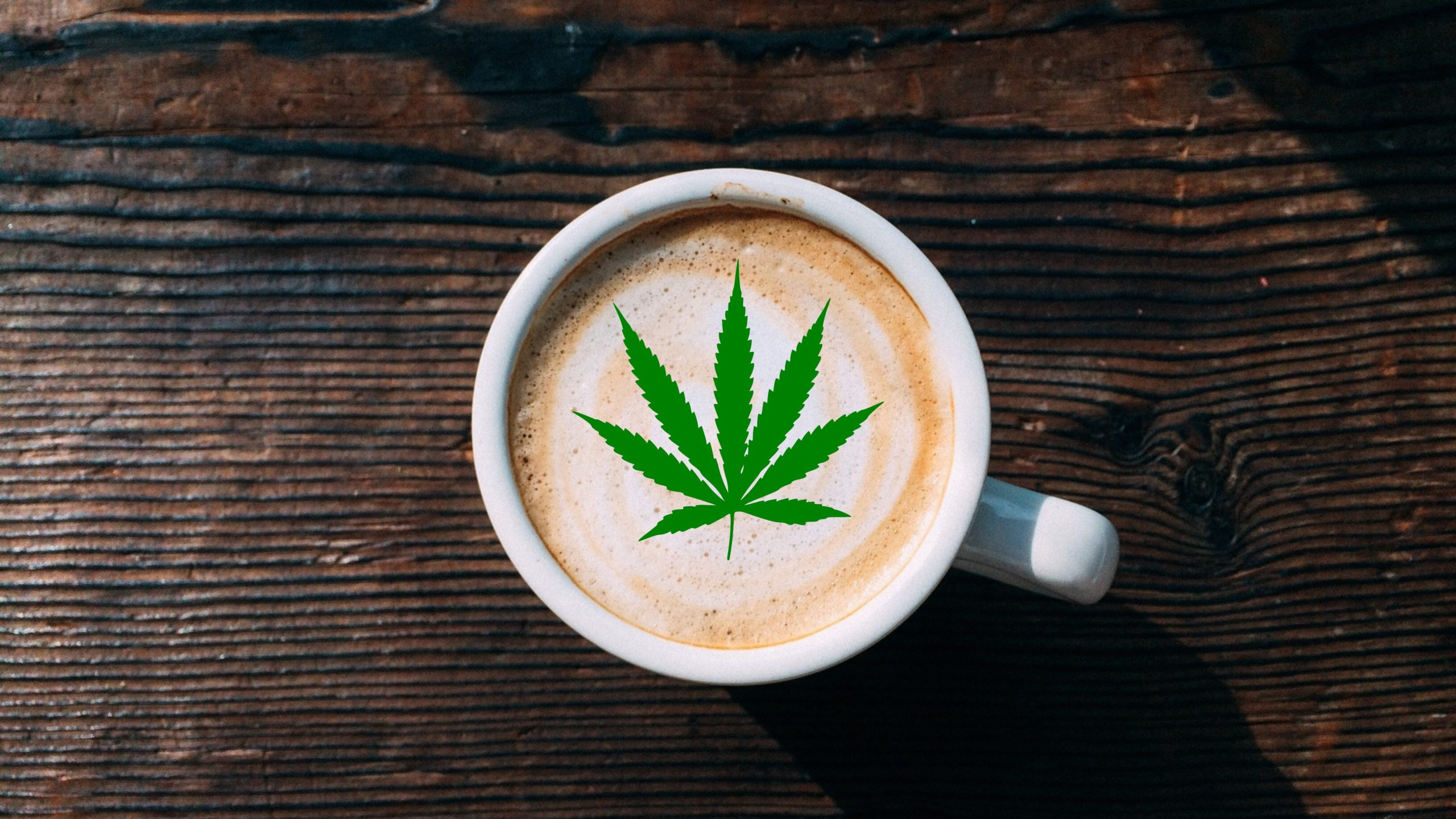 Cannabis Cafés are Beginning to Open Up Across the World