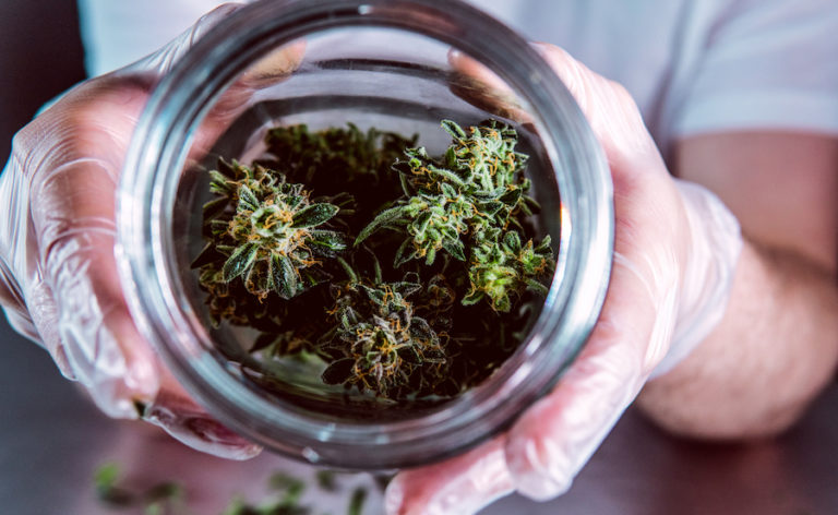 hands and jar of cannabis