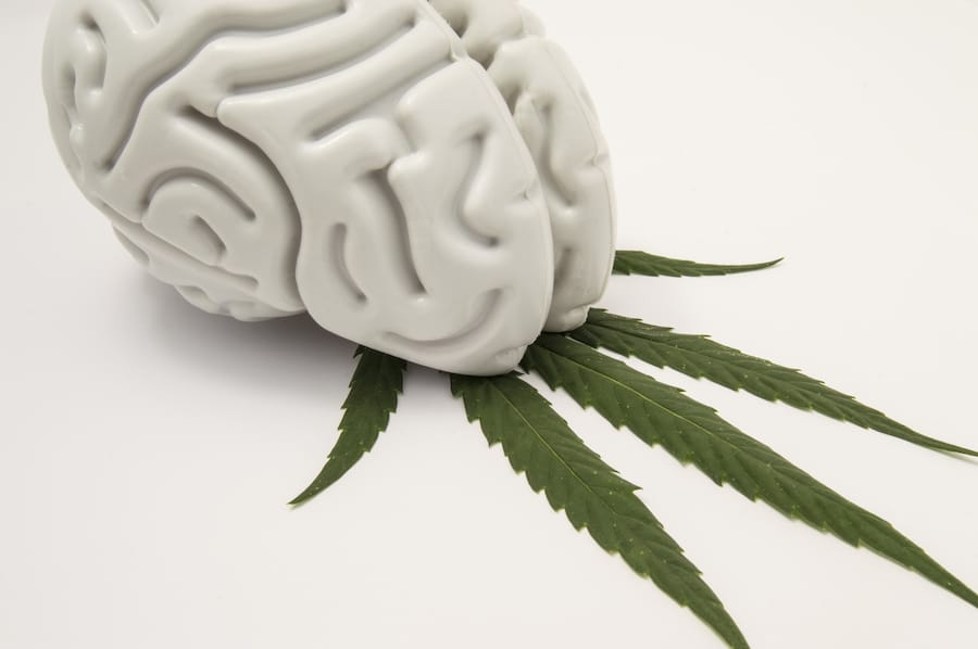 Traumatic Brain Injury and Mental Illness: How Cannabis Can Help