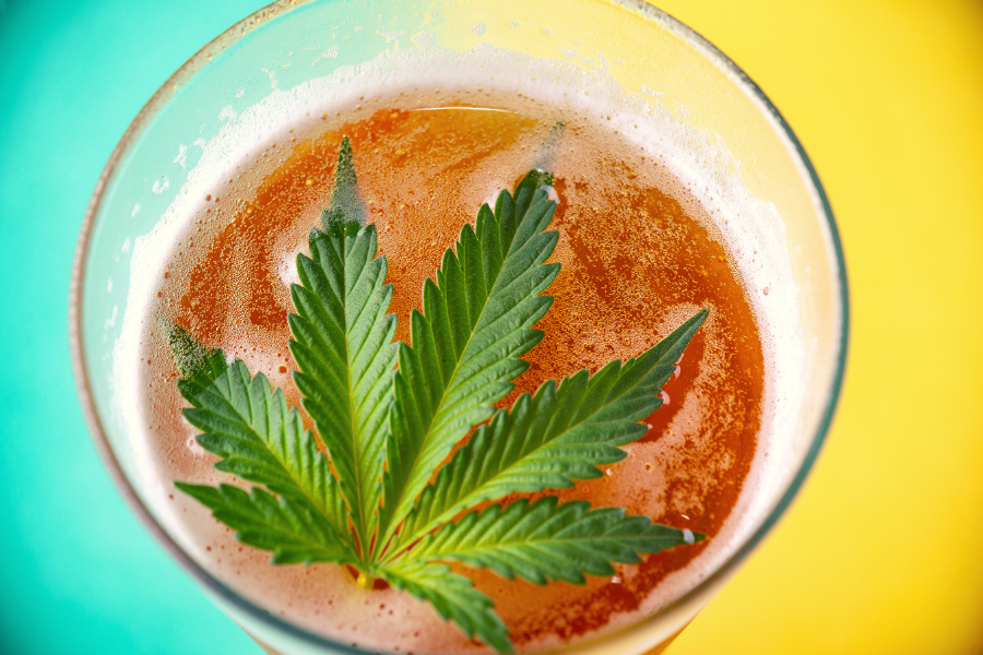 The Risk of Mixing Cannabis and Alcohol Consumption