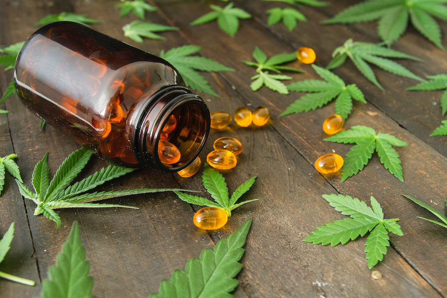 Making Homemade Activated Cannabis Oil Capsules