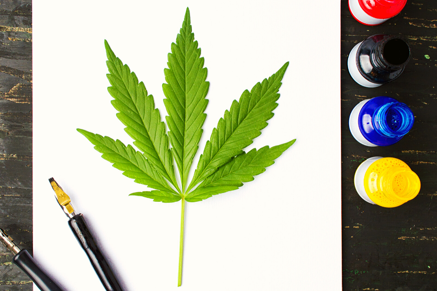 Discover the Burgeoning Cannabis Art Scene and Learn What It's All About