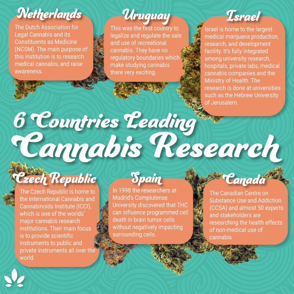 cannabis research countries
