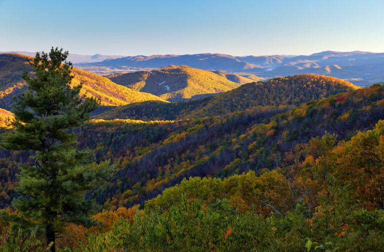 Early Morning Scene in Shenandoah National Park, Virginia
