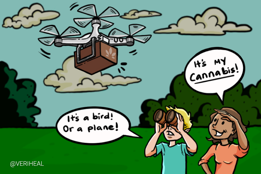Get Your Cannabis Delivered to You By Drone