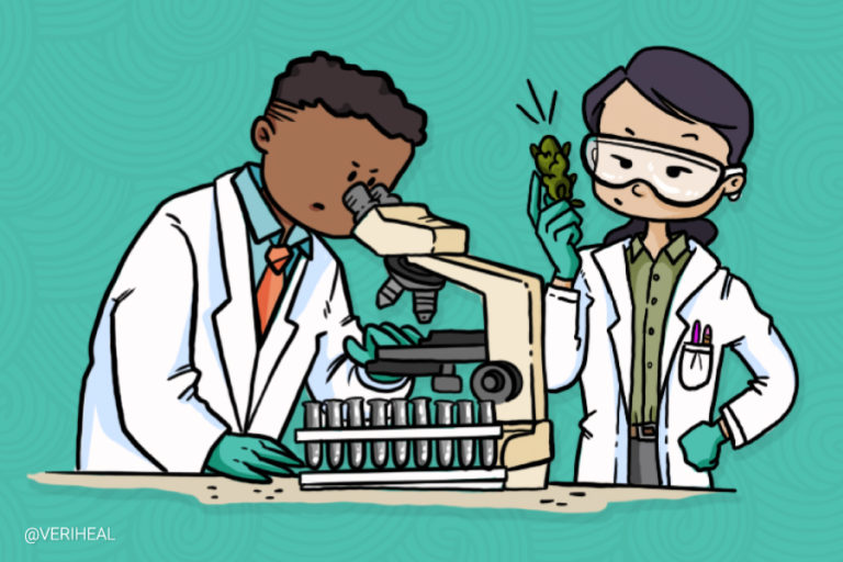 all-about-cannabis-research