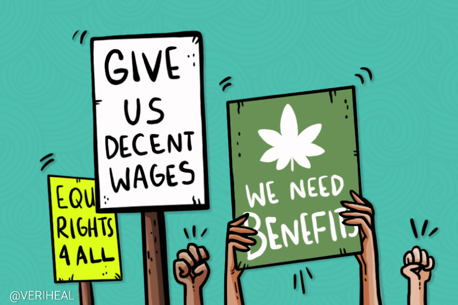 Everything You Need to Know About Cannabis Labor Unions