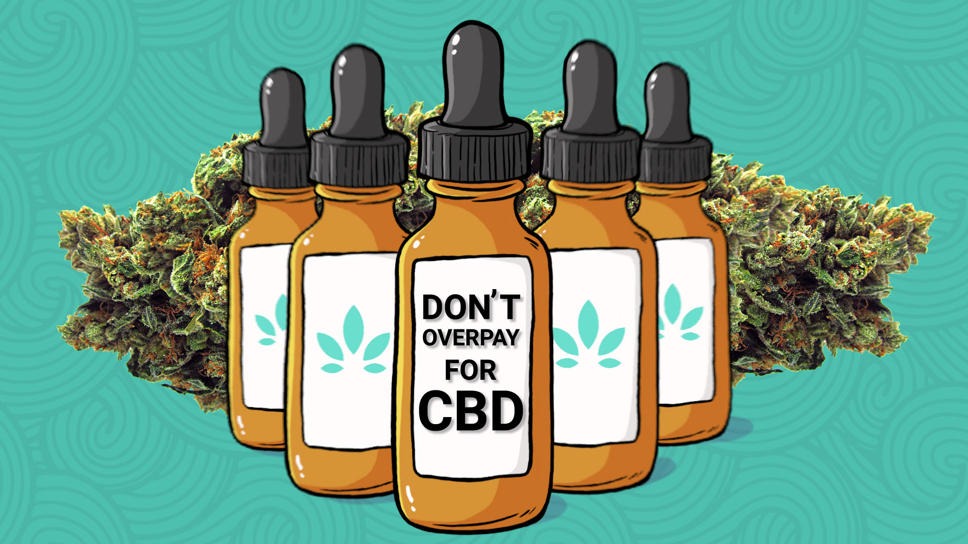 This Is Why You Shouldn't Be Overpaying For Expensive CBD