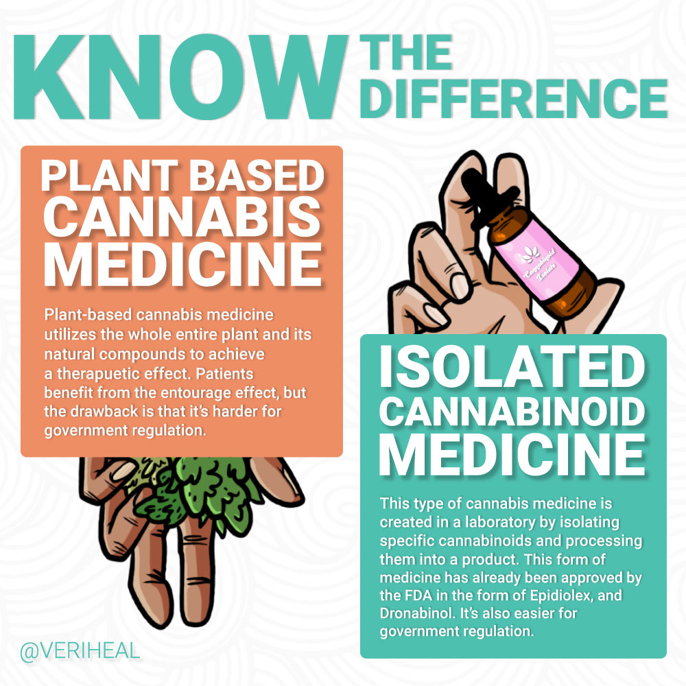plantbased-vs-isolate-infographic
