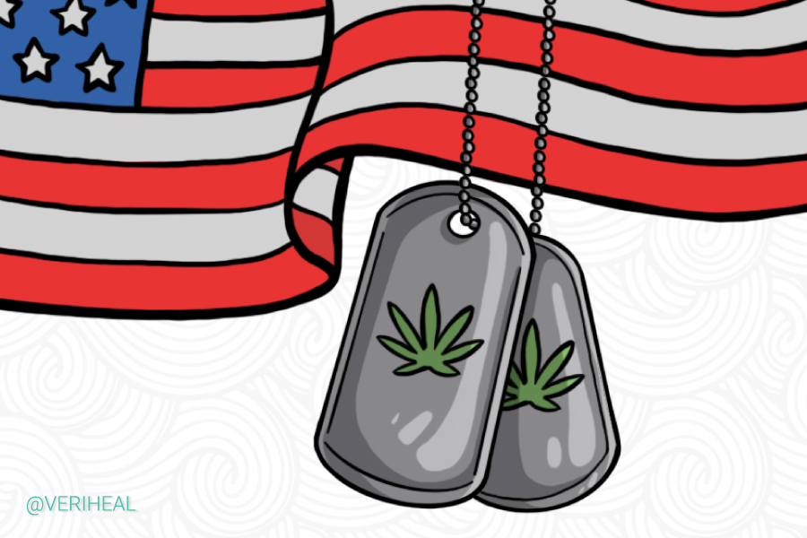 House Committee Says Yes to Medical Cannabis for Veterans