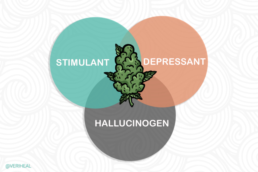Is Cannabis Classified as a Hallucinogen, Stimulant, or Depressant?