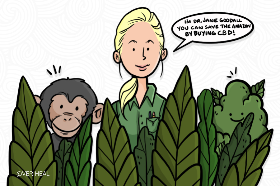 Jane Goodall Partners With CBD Brand In The Name Of Conservation