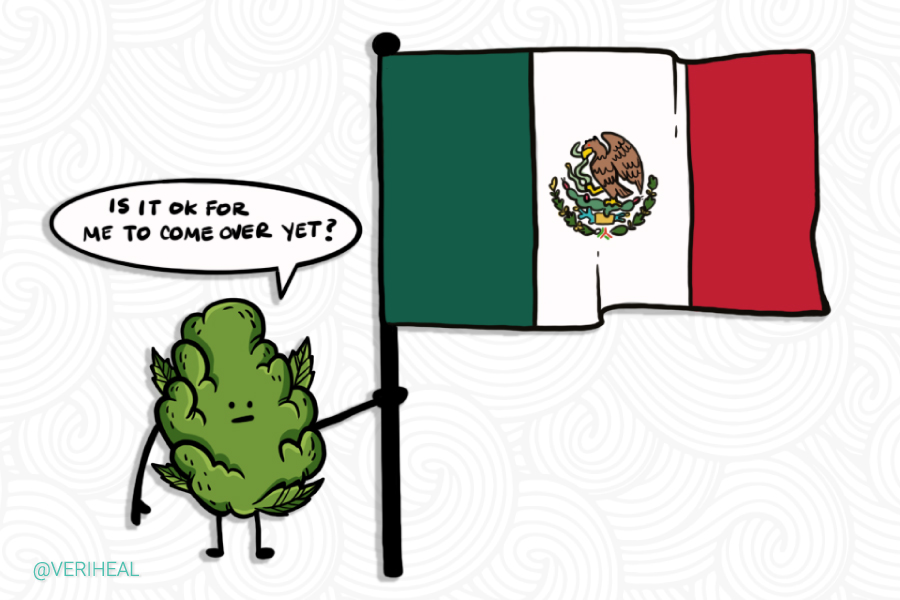 Mexico Extends Cannabis Legalization Legislation… Again