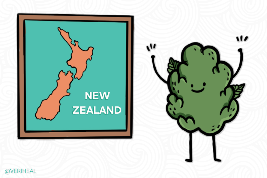 New Zealand Releases Cannabis Referendum Legalization Details