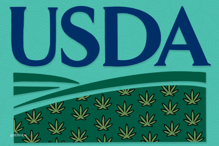 The USDA Releases Guidelines for Federal Loans for the Hemp Industry
