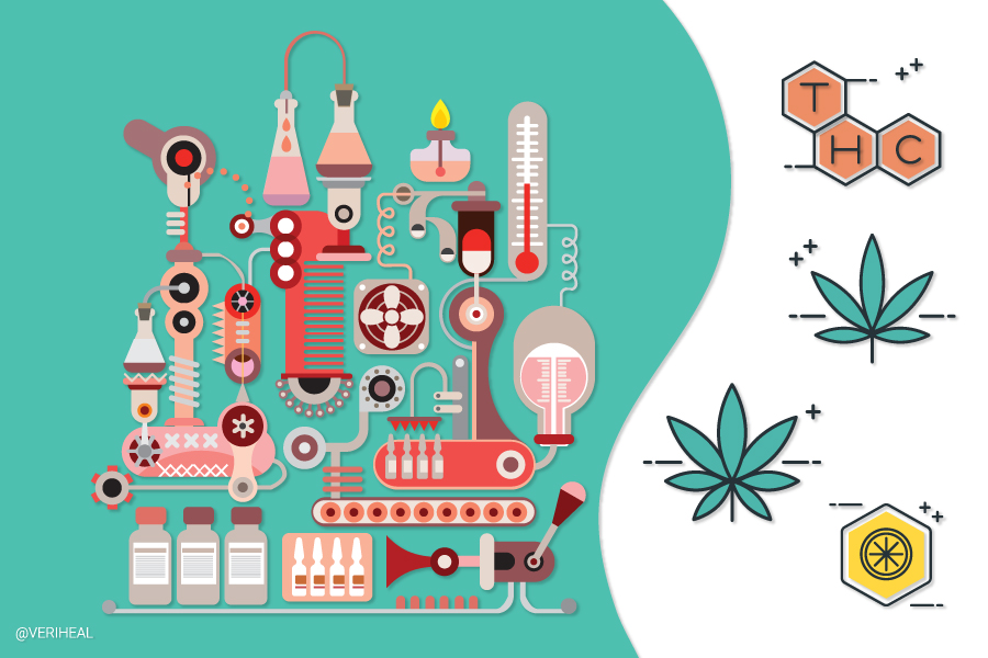 All About Cannabis Third Party Testing and Certificates of Analysis