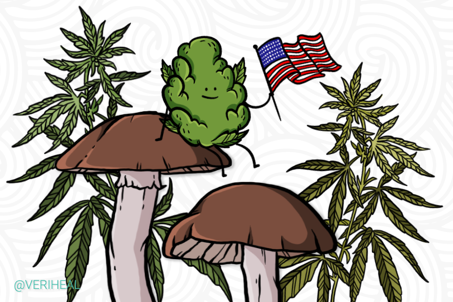 Federal Commission Urges Cannabis and Psychedelics Research For Vets