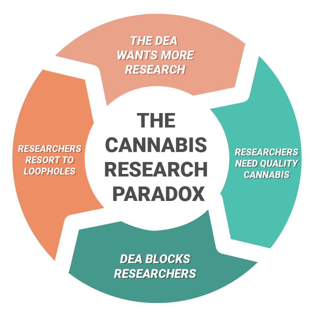 Low Quality Cannabis Continues to Hinder Proper Research Paradox