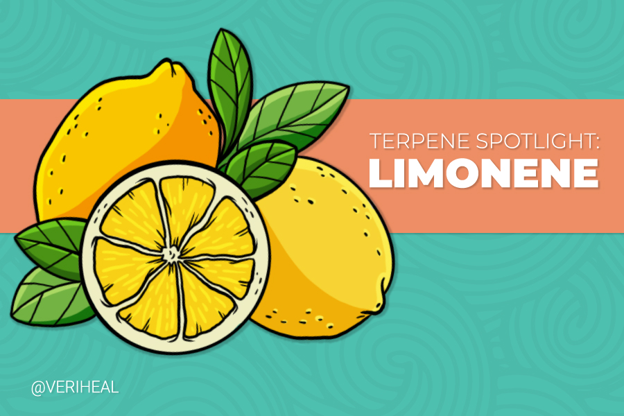 Terpene Spotlight: Enjoying the Many Benefits of Limonene