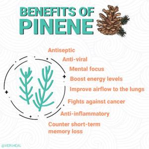 pinene social post