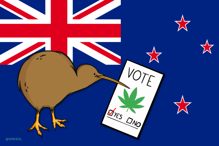 New Zealanders Vote on a Cannabis Legalization and Control Bill