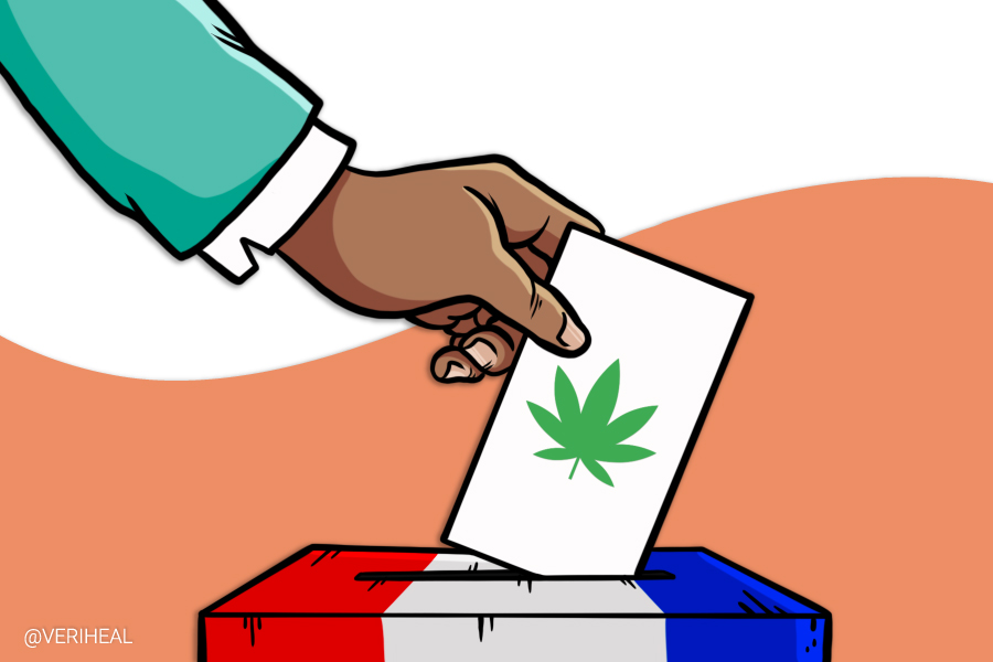 The Issue of Cannabis Prohibition Hovers Over the 2020 Election