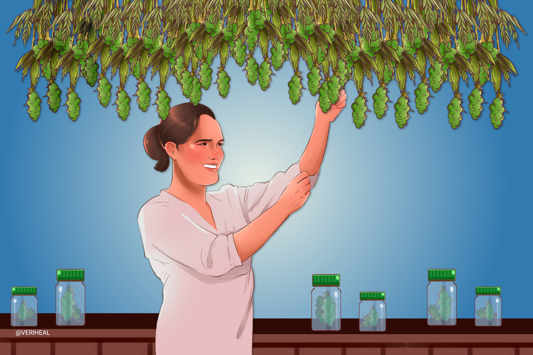 Tips for Drying and Curing Your Homegrown Cannabis Plants