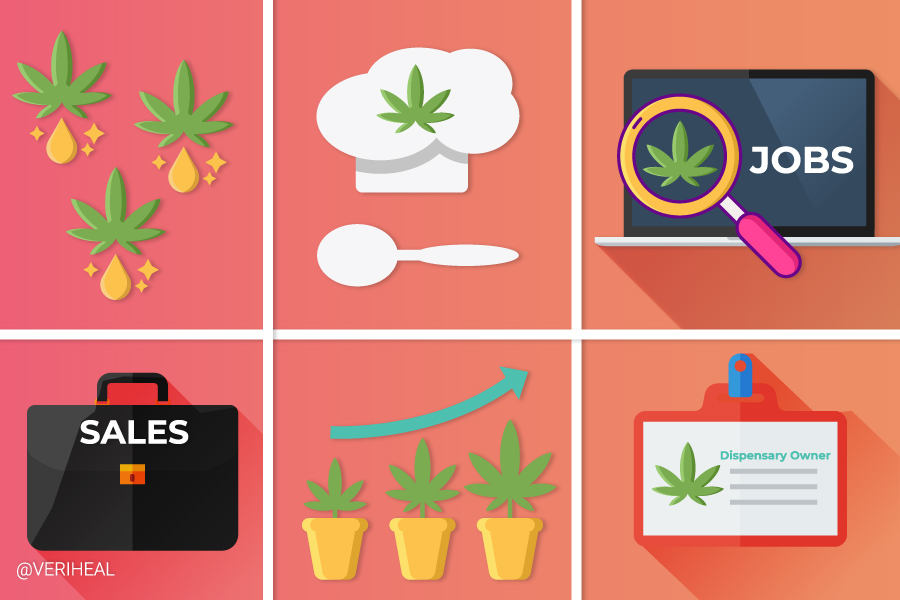 Check Out These 5 High Paying Cannabis Industry Jobs