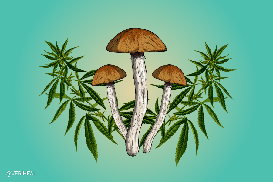 Combining the Therapeutic Powers of Cannabis and Psilocybin