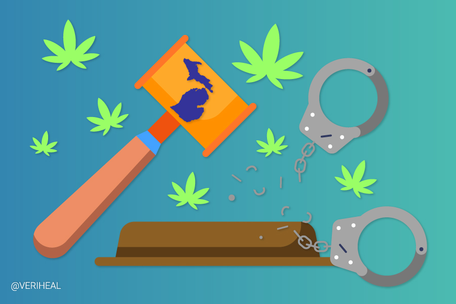 Last Prisoner Project Launches Cannabis Prisoner Release Campaign in Michigan