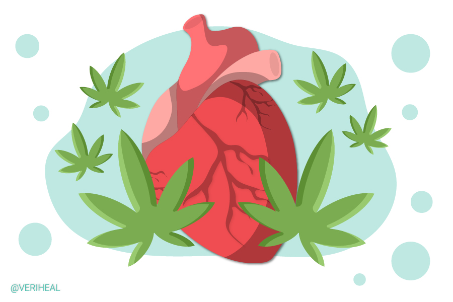 Two New Studies Shed Light on Cannabis Consumption and Heart Disease