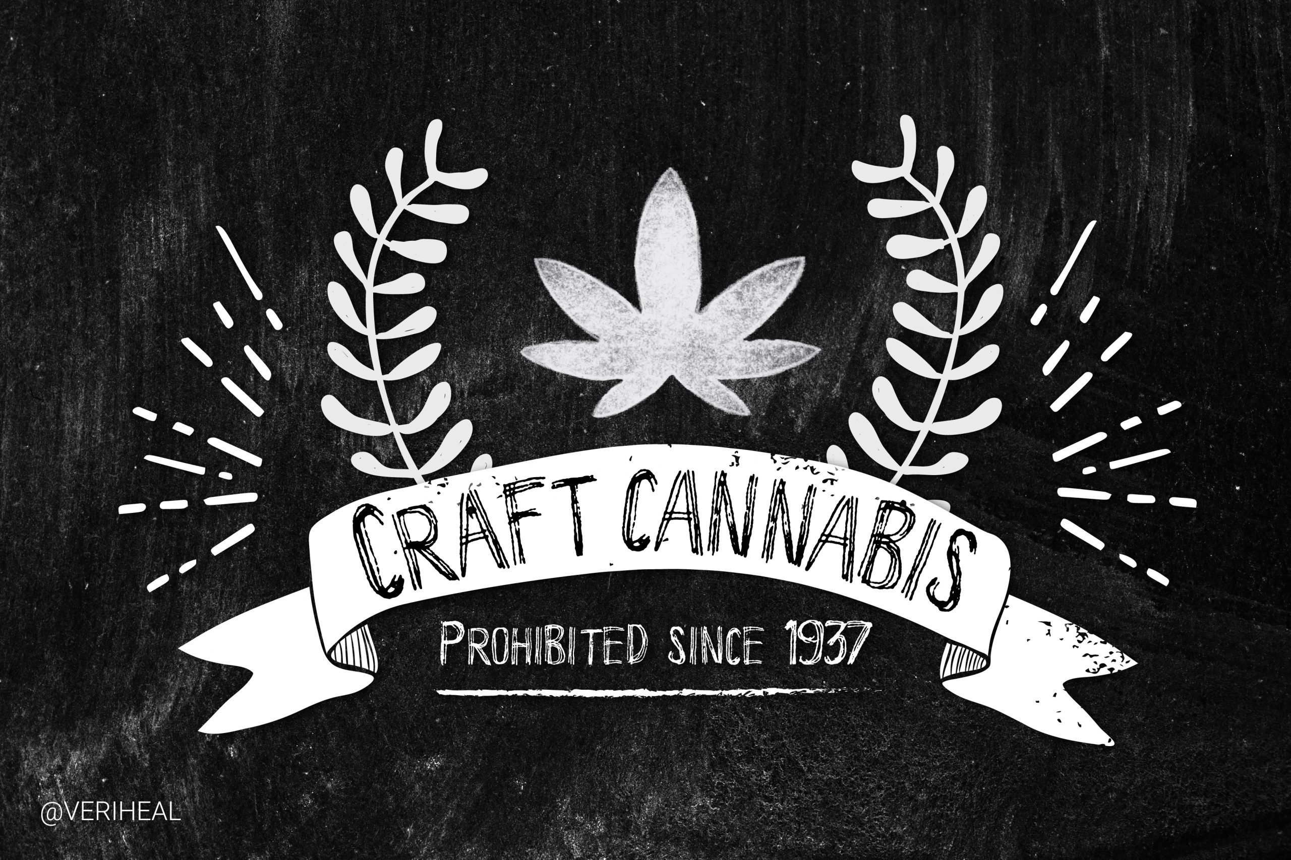 Is the Future of Cannabis in Craft or Commercial Cultivation?