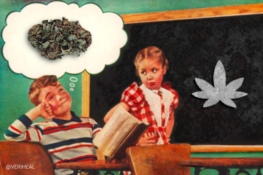 Students in Pennsylvania's K-12 Schools Are Learning About Hemp