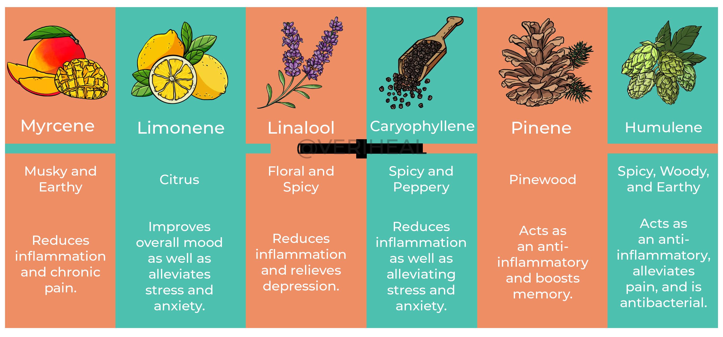 Veriheal Terpene Infographic