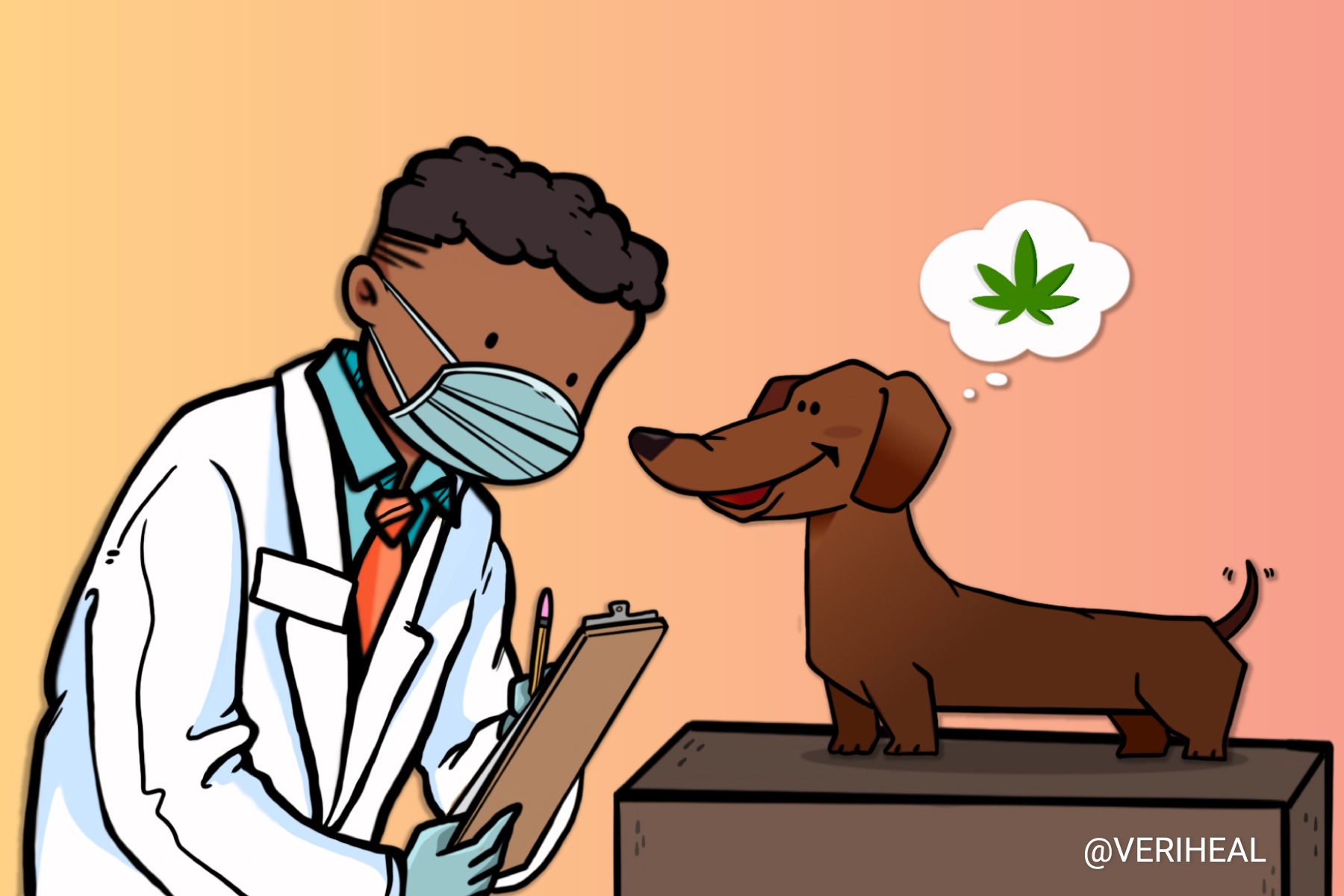 Rhode Island Veterinarians May Soon Be Able to Approve Pets for Cannabis Therapy
