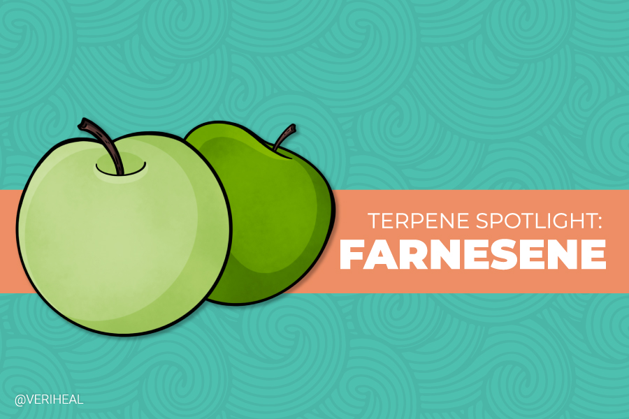 Terpene Spotlight: Farnesene the Green Apple Terpene