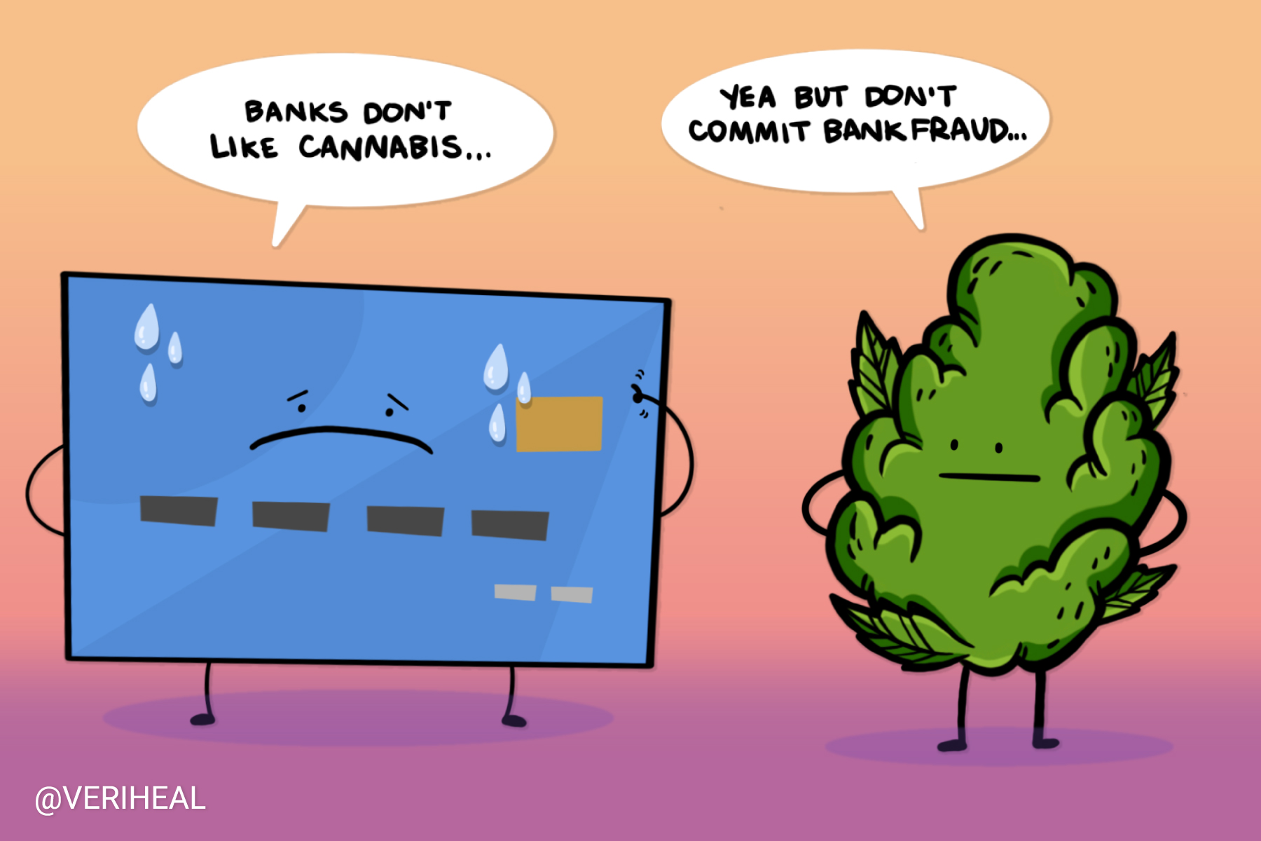 Why Would a CEO of a Successful Cannabis Company Commit Bank Fraud?